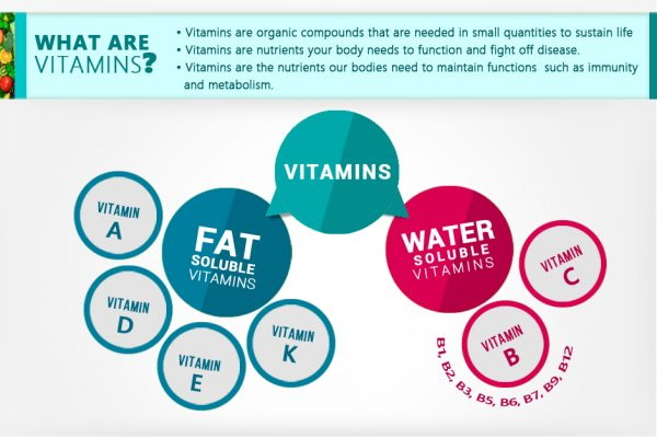 What-are-vitamins?